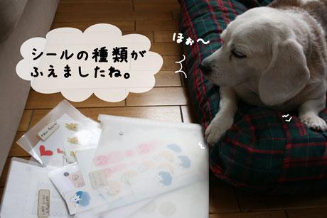 4_20101020142849.jpg