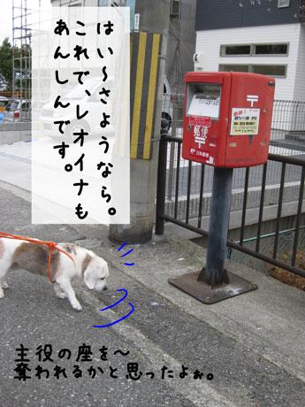 4_20101207145451.jpg