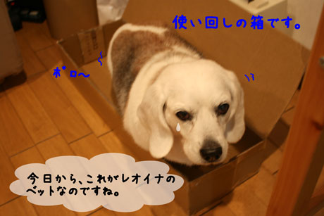 4_20110122122949.jpg