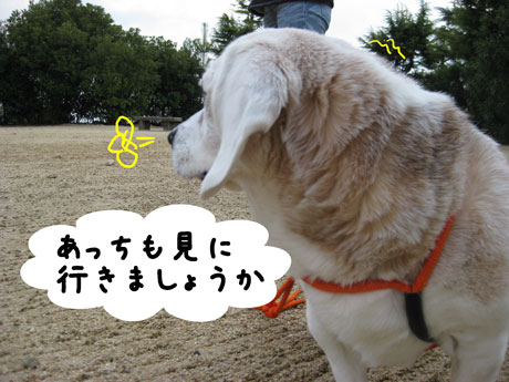 4_20110308144621.jpg