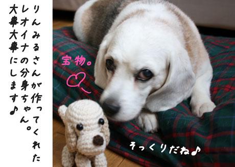 5_20100629112601.jpg