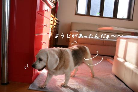 5_20100719132413.jpg