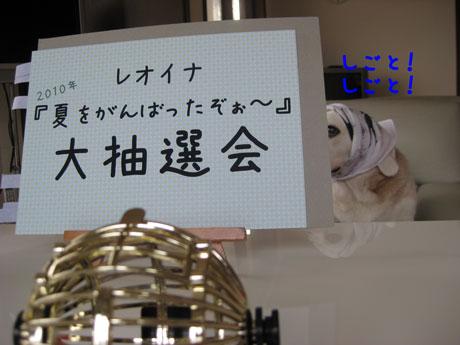 5_20100929171358.jpg