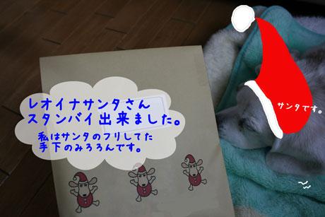 5_20101212161449.jpg