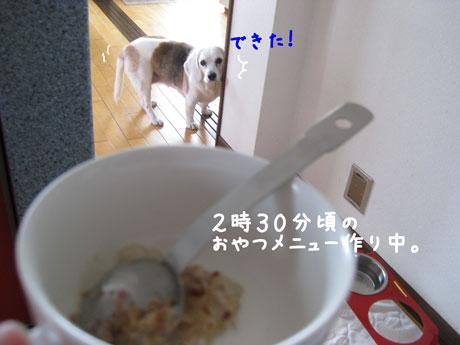 5_20110205150035.jpg