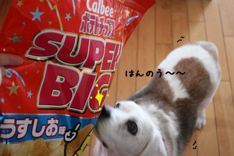 5_20110323163757.jpg