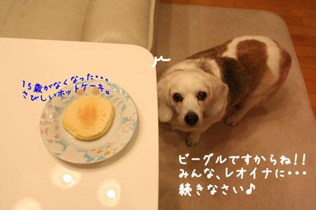 6_20100105211632.jpg