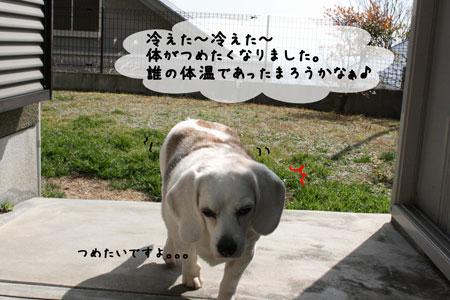 6_20100218145950.jpg