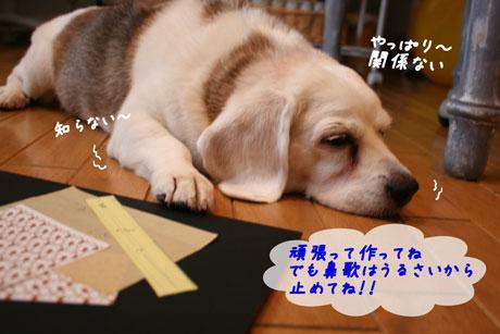 6_20100713150219.jpg