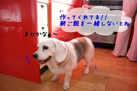 6_20100719132412.jpg