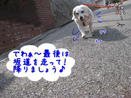 7_20100331165403.jpg