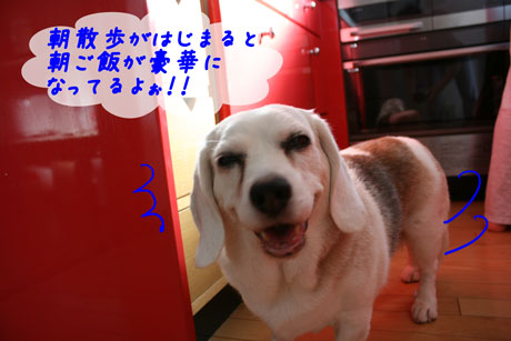 7_20100719132424.jpg