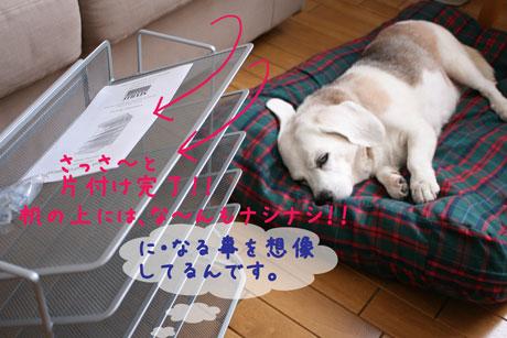 7_20101013141505.jpg