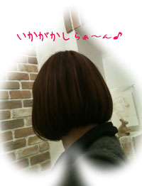 7_20101103221426.jpg