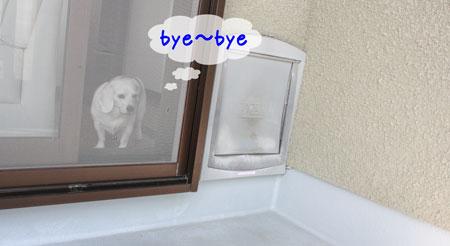 8_20091021135145.jpg