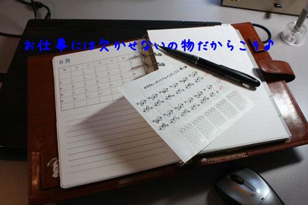 9_20100221180723.jpg