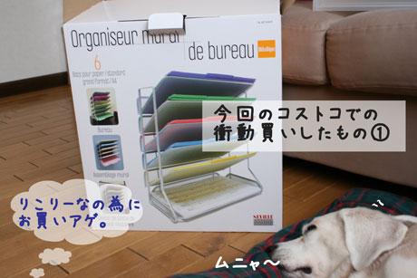 9_20101013141505.jpg
