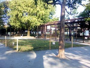 10月31日の中庭