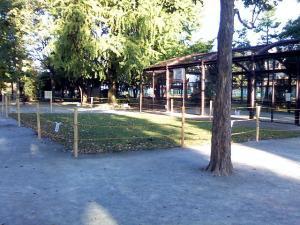 10月22日の中庭