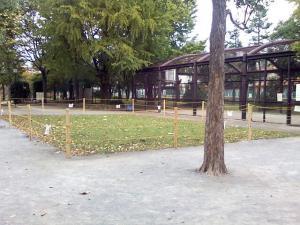 10月23日の中庭