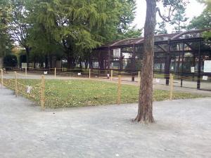 10月24日の中庭