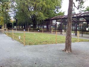 10月25日の中庭