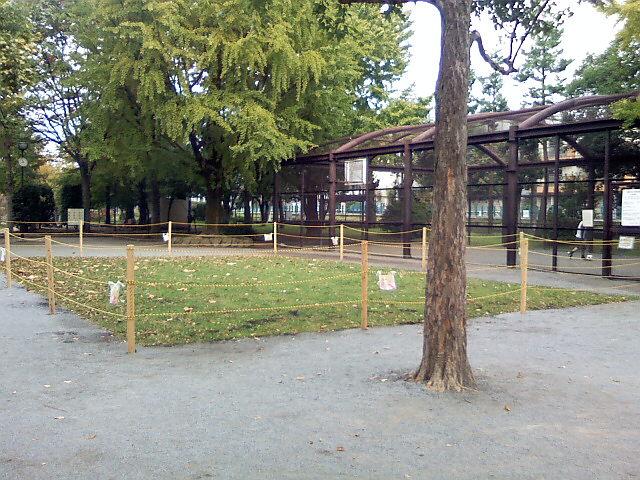 10月29日の中庭