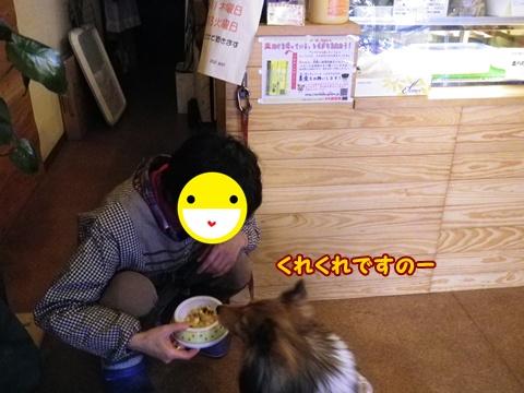 20120212_1.jpg