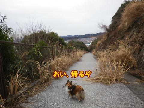 20120216_13.jpg