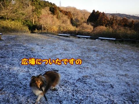 20120218_1_1.jpg
