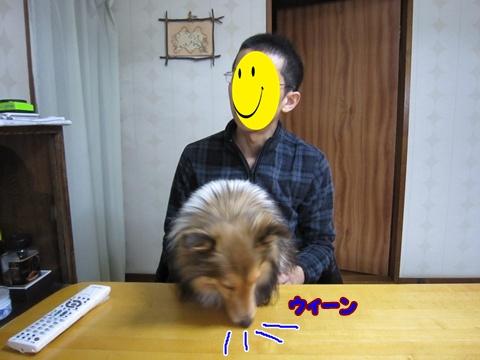 20120225_10.jpg