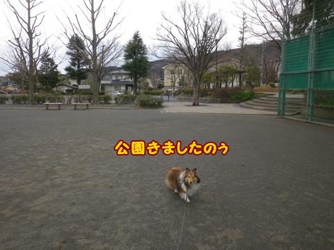 20120226_1_1.jpg
