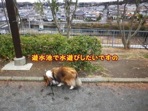 20120226_1_6.jpg