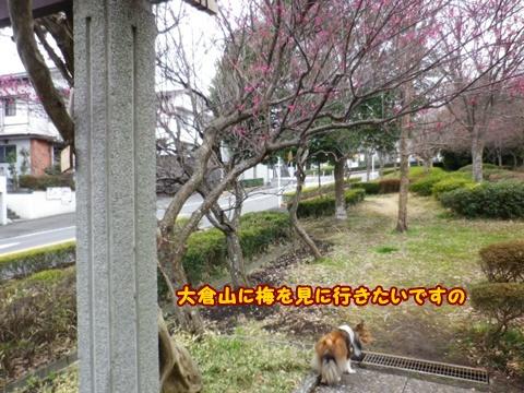 20120226_1_8.jpg