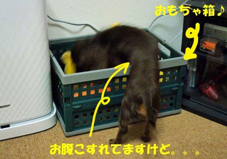 おもちゃ箱1