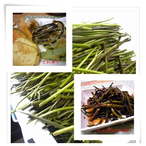 ワラビ料理