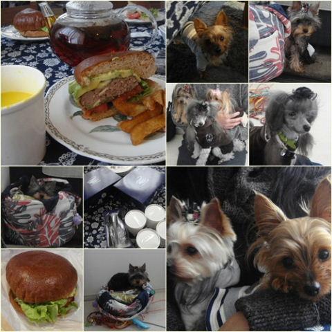 100213burger.jpg