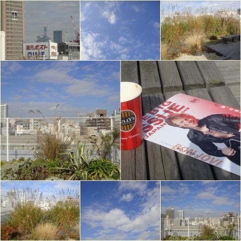 201011202.jpg