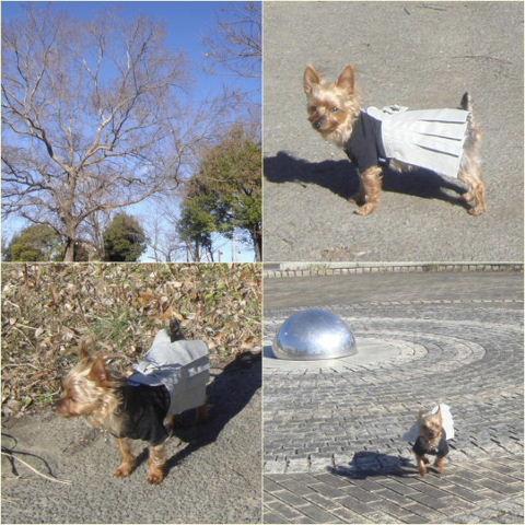 2010shogatsu3.jpg