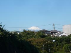 1028fuji1.jpg