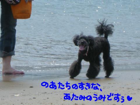そう、そこに海があるから我は行く