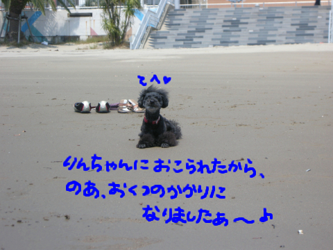 熱海の海のスフィンクスです