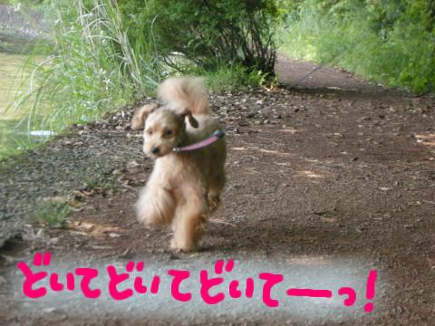 邪魔っ!!