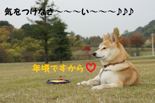 DSC07509.jpg
