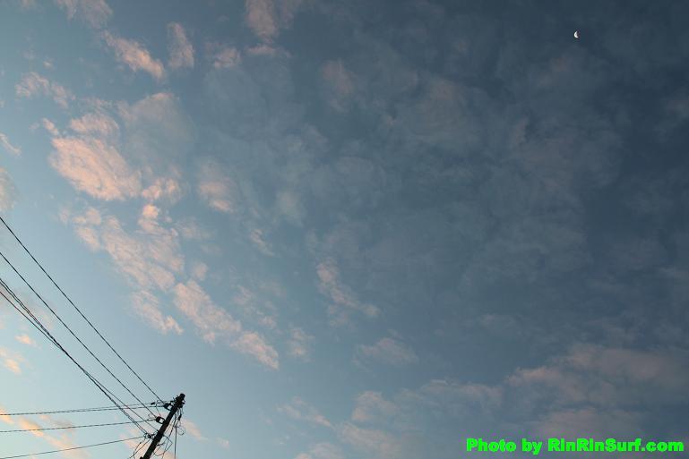 DPP_16869.jpg