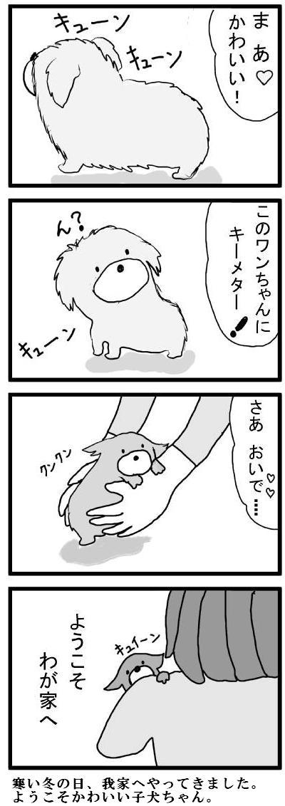 リッポおいたち1-2