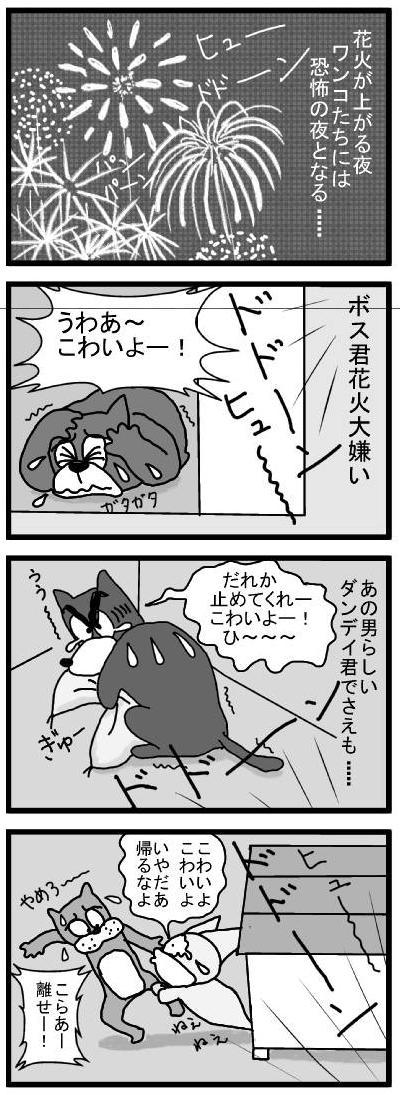 307 花火 ブログ用