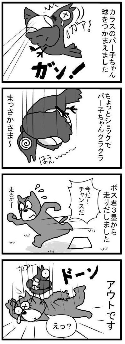 409 パーコちゃん快挙 ブログ用