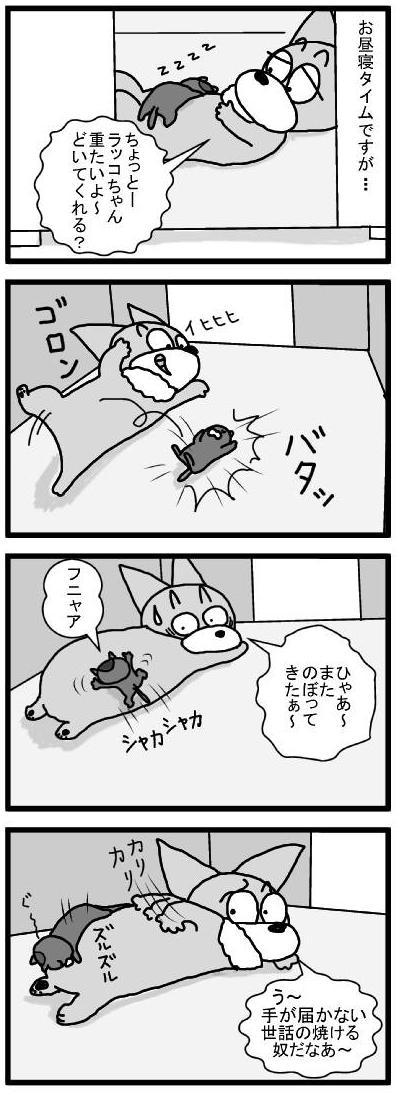 458 甘えん坊ラッコちゃん ブログ用