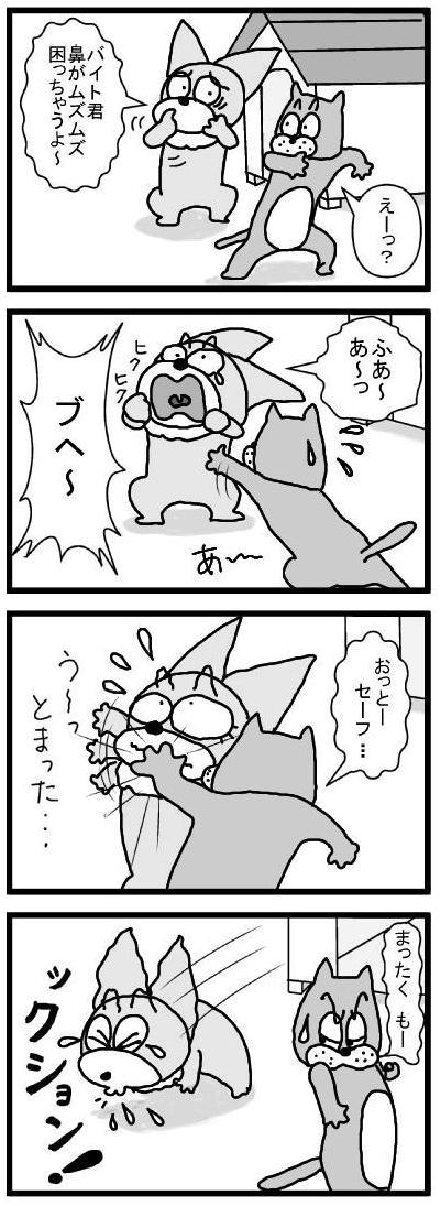 479 くしゃみ ブログ用